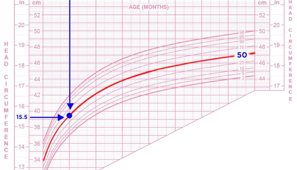 Baby-Growth-Chart-for-Girls--Head-Circumference_1536x1443-1