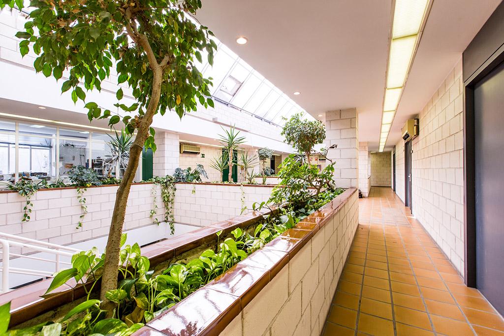 ortosur-instalaciones-segunda-planta-pasillo